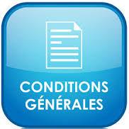 Logo des conditions générales de location des meublés Daviaud à Amélie les Bains.