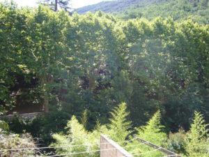 Voici une photo du balconnet avec vue sur rivière du T1 n°B3. Cette location se trouve à 100 mètres des thermes d'Amélie les Bains.