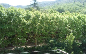 Voici une photo du balconnet avec vue sur rivière du T1 n°B5. Cette location se trouve à 100 mètres des thermes d'Amélie les Bains.